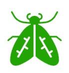 extermination des nuisibles - guêpe frelon abeille