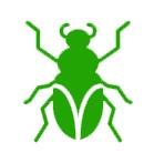 extermination de nuisible - les insectes - Désinsectisation